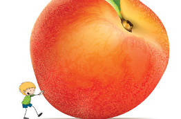 Roald Dahl's James and the Giant Peach, JR